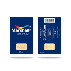 - Marshall Boya (Örnek Ürün)